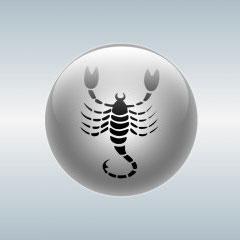 как стать знаком зодиака скорпион